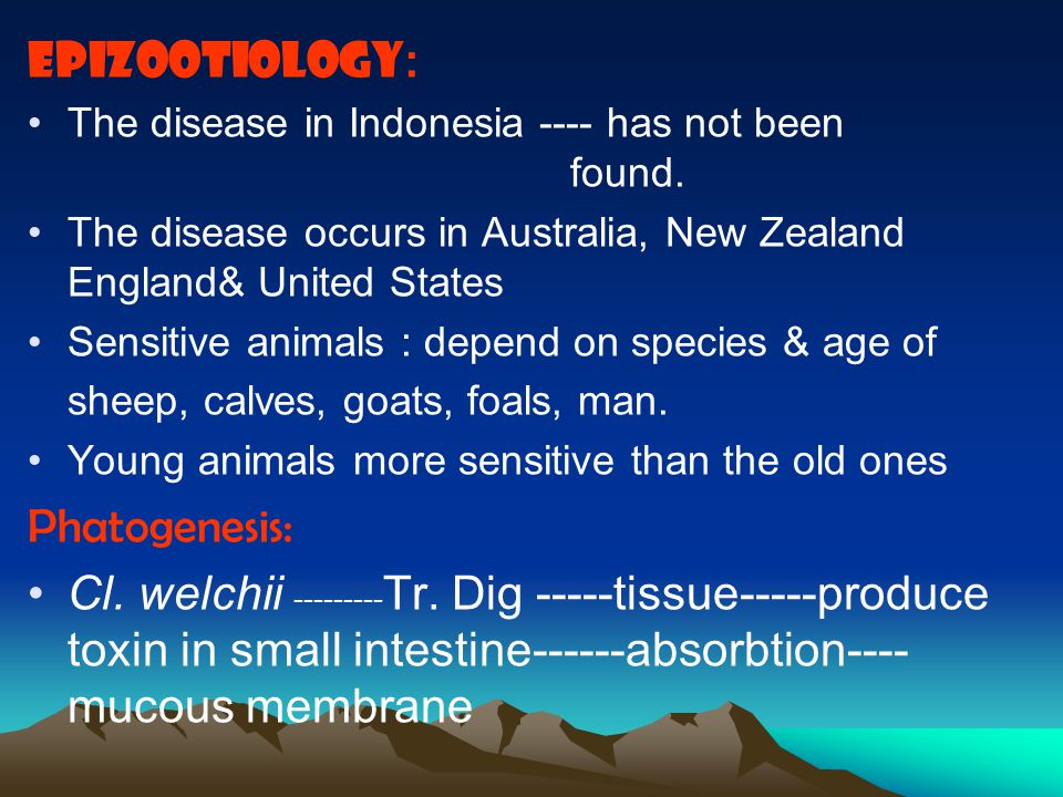 EpizootiologY: Phatogenesis: