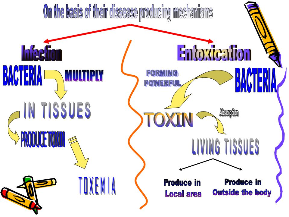 On the basis of their dissease producing mechanisms