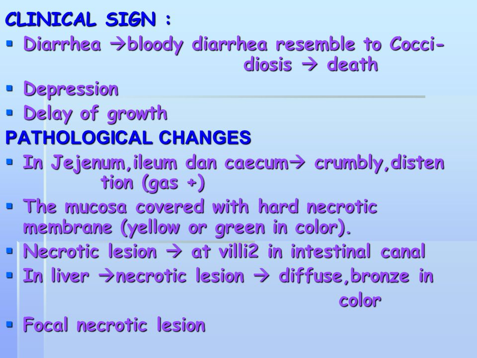 CLINICAL SIGN : Diarrhea bloody diarrhea resemble to Cocci- diosis  death. Depression. Delay of growth.