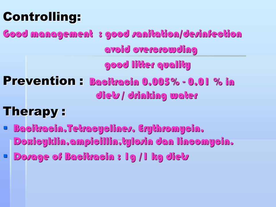Prevention : Bacitracin 0,005% - 0,01 % in diets / drinking water