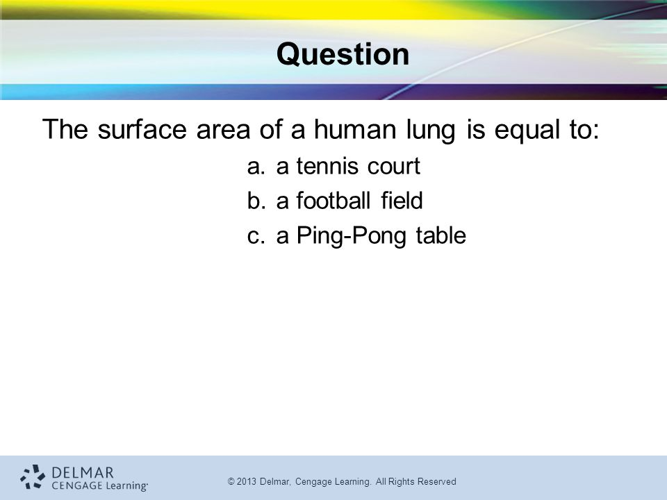 Question The surface area of a human lung is equal to: a tennis court