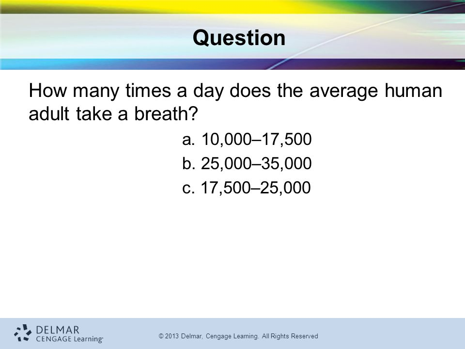 Question How many times a day does the average human adult take a breath a. 10,000–17,500. b. 25,000–35,000.