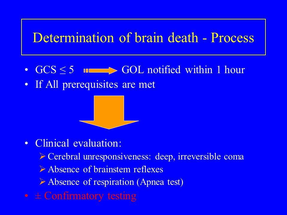 Determination of brain death - Process