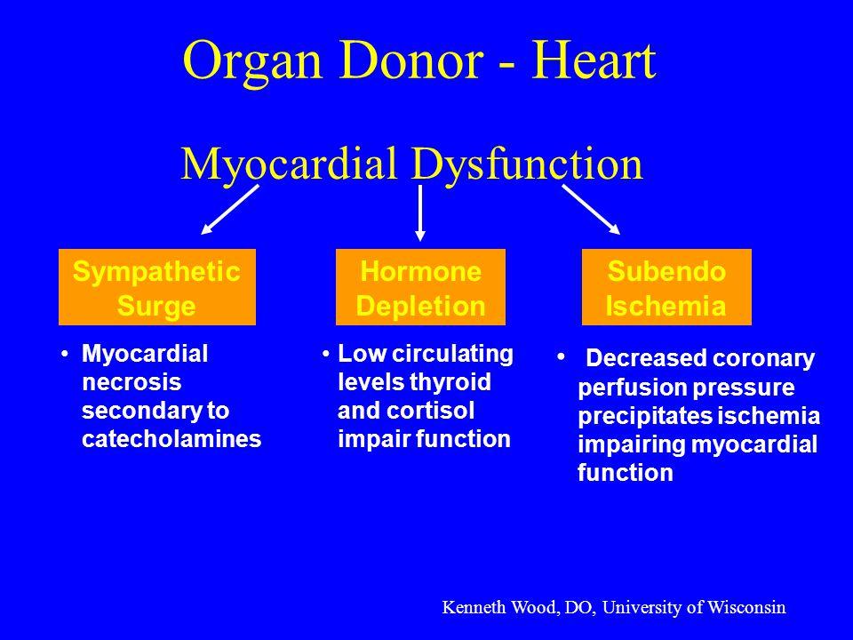 Myocardial Dysfunction