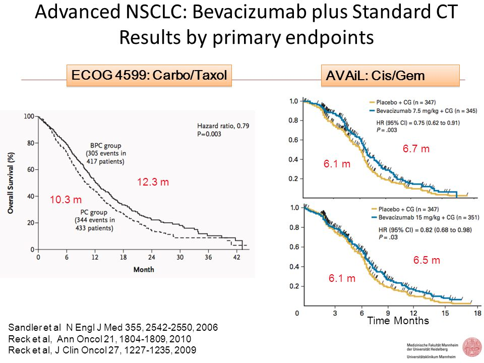 Advanced NSCLC: Bevacizumab plus Standard CT Results by primary endpoints