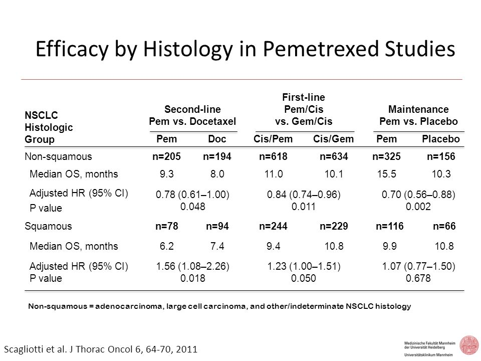 Efficacy by Histology in Pemetrexed Studies