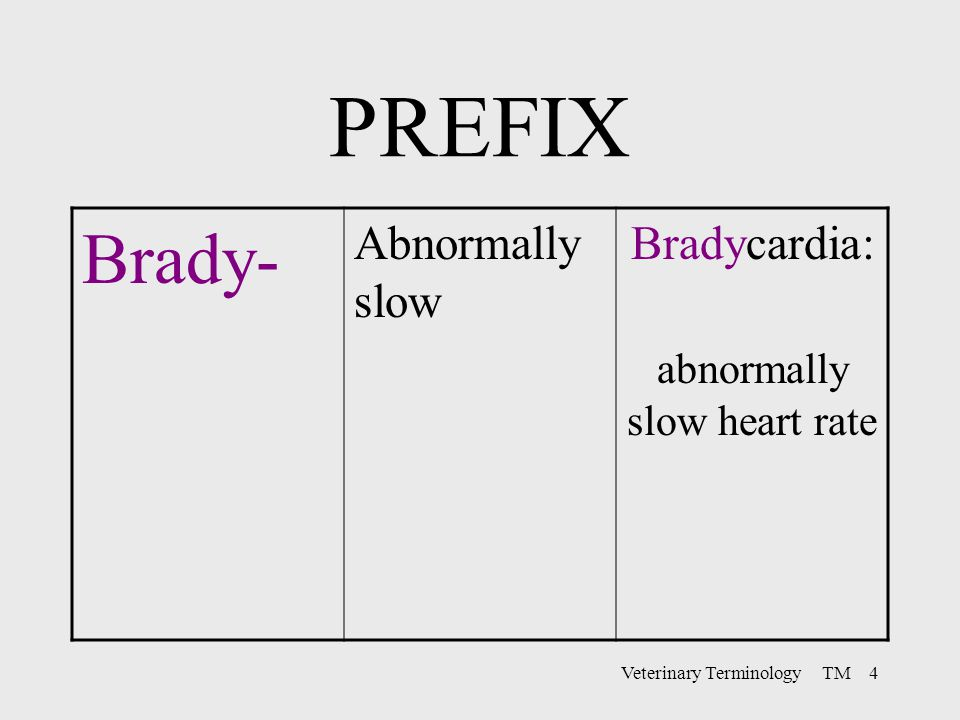 PREFIX Brady- Abnormally slow Bradycardia: abnormally slow heart rate
