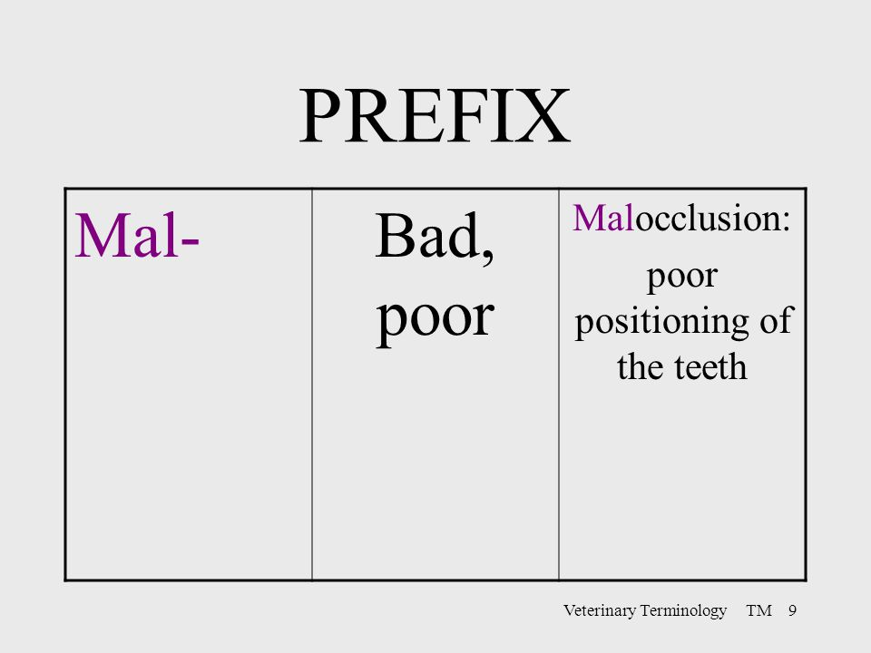 PREFIX Mal- Bad, poor Malocclusion: poor positioning of the teeth