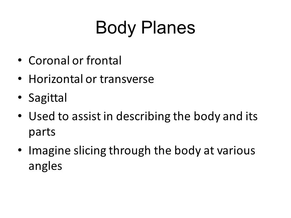 Medical Terminology Lesson 2: Anatomy and Physiology - ppt video ...