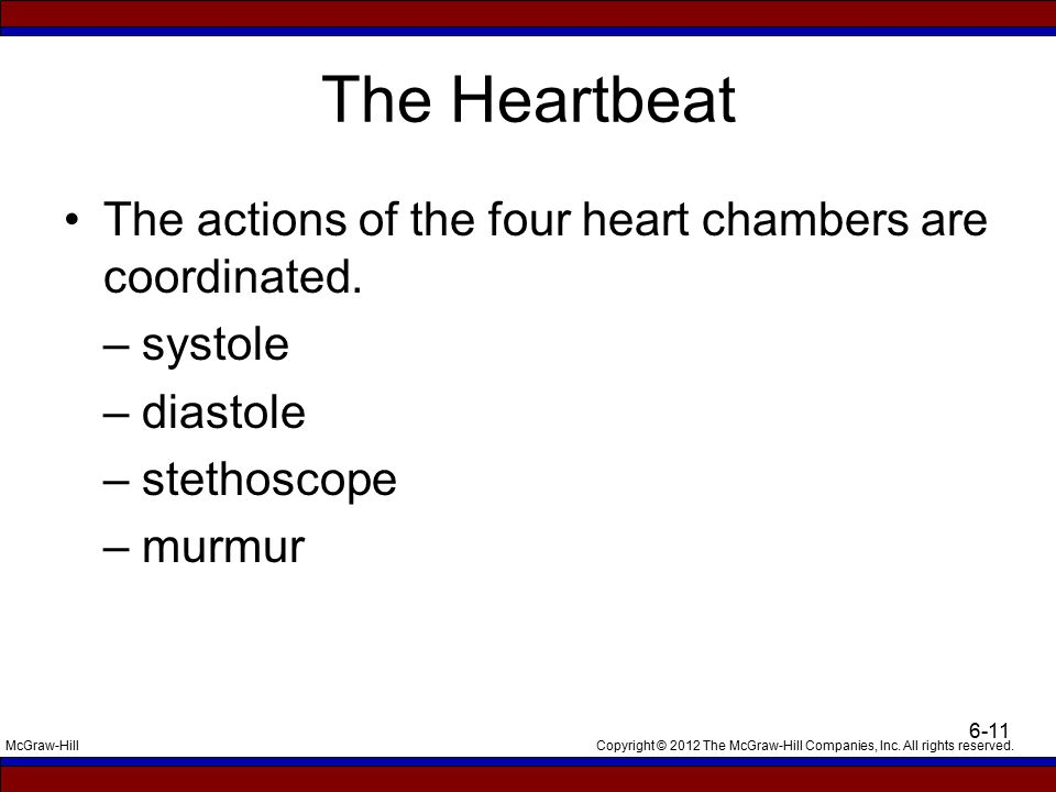 The Heartbeat The actions of the four heart chambers are coordinated.