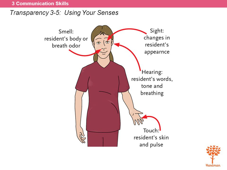 Transparency 3-5: Using Your Senses