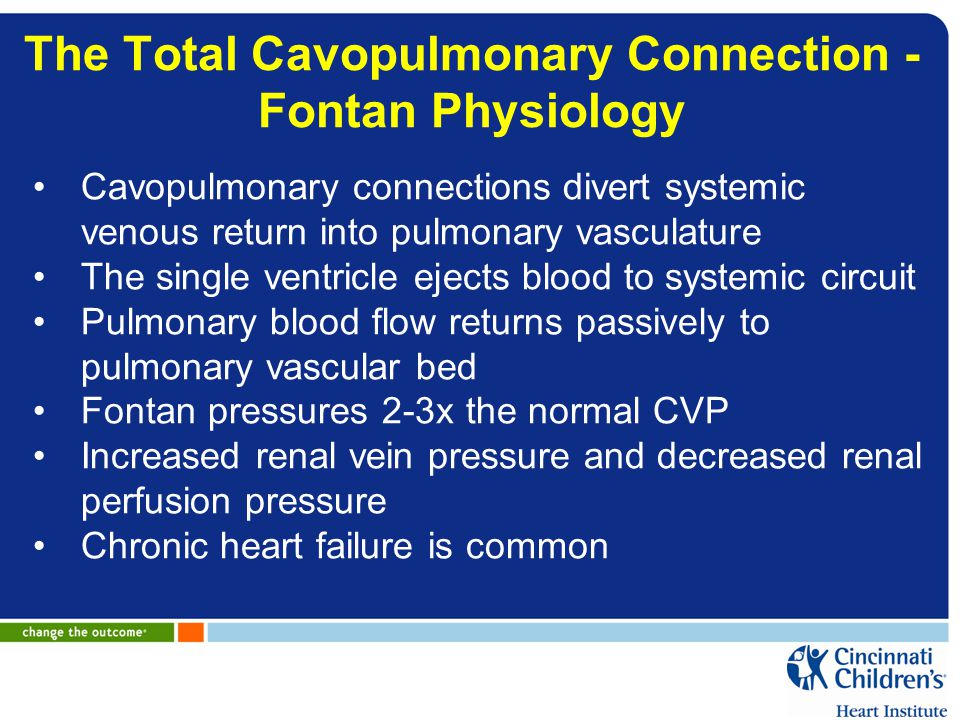 The Total Cavopulmonary Connection - Fontan Physiology