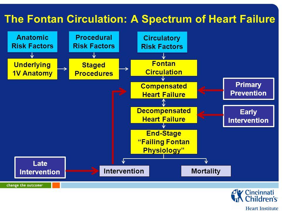 The Fontan Circulation: A Spectrum of Heart Failure