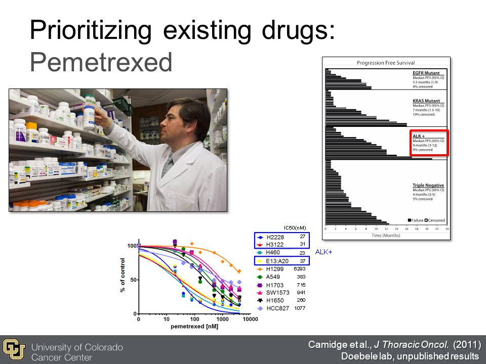 Prioritizing existing drugs: Pemetrexed