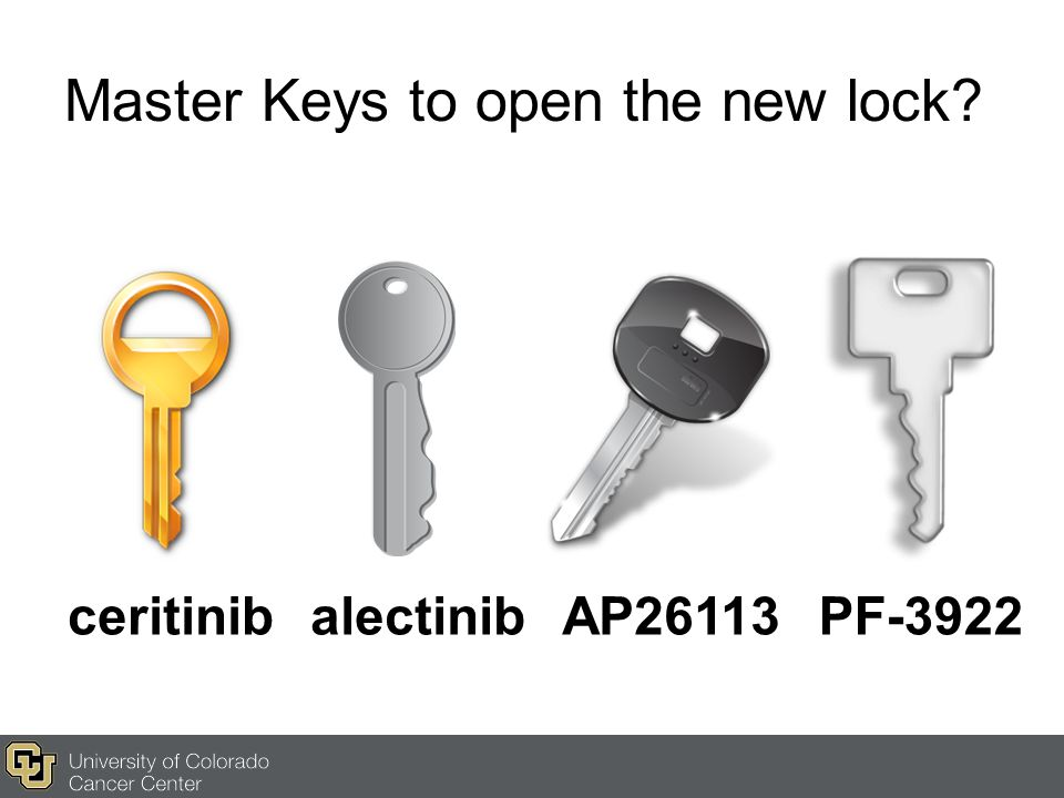Master Keys to open the new lock