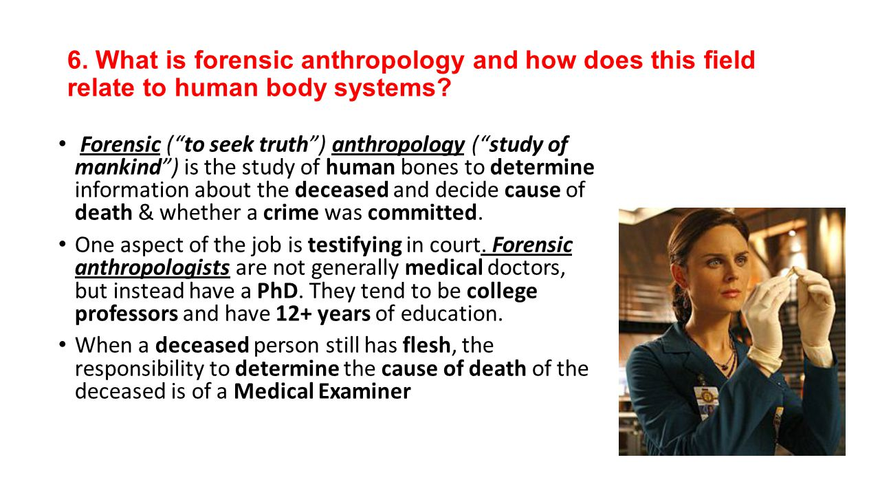 6. What is forensic anthropology and how does this field relate to human body systems