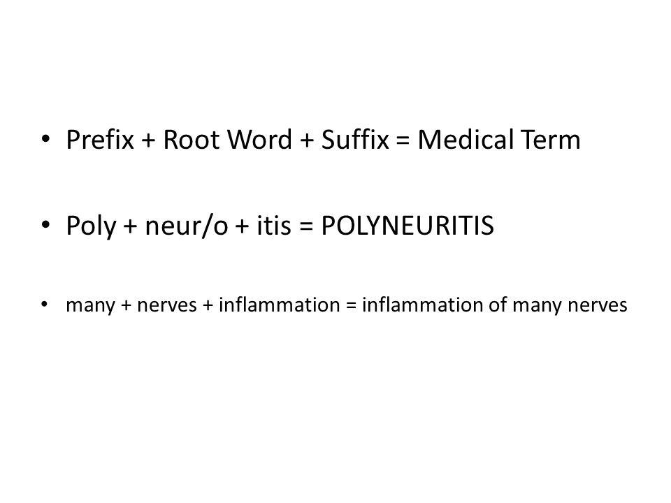 Prefix + Root Word + Suffix = Medical Term