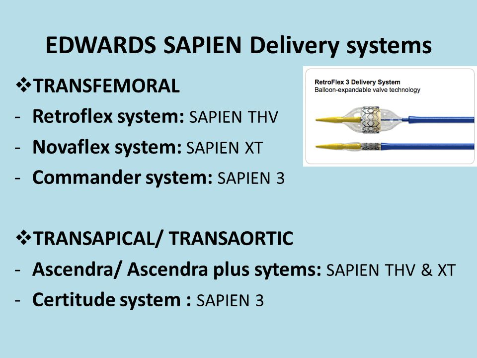 EDWARDS SAPIEN Delivery systems