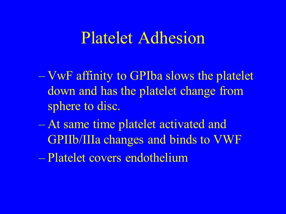 Platelet Adhesion VwF affinity to GPIba slows the platelet down and has the platelet change from sphere to disc.