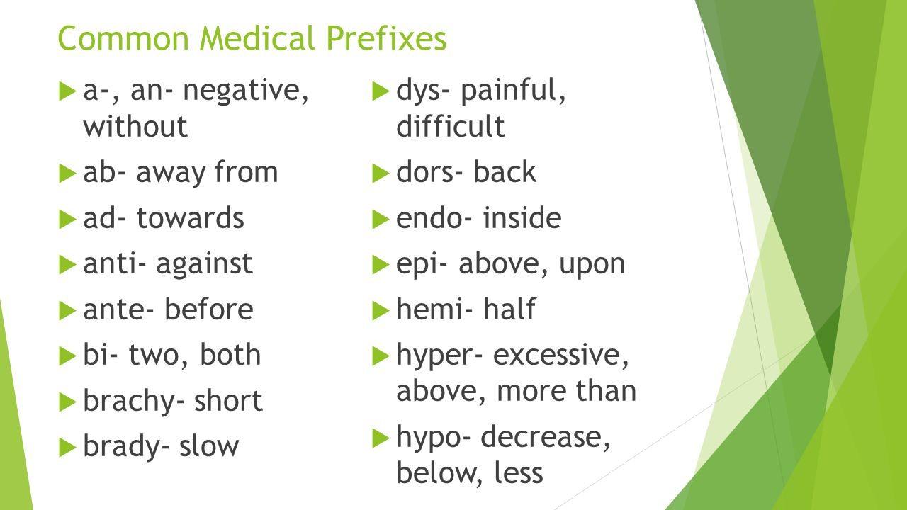 Common Medical Prefixes