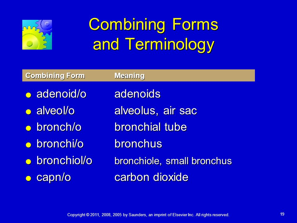 Combining Forms and Terminology