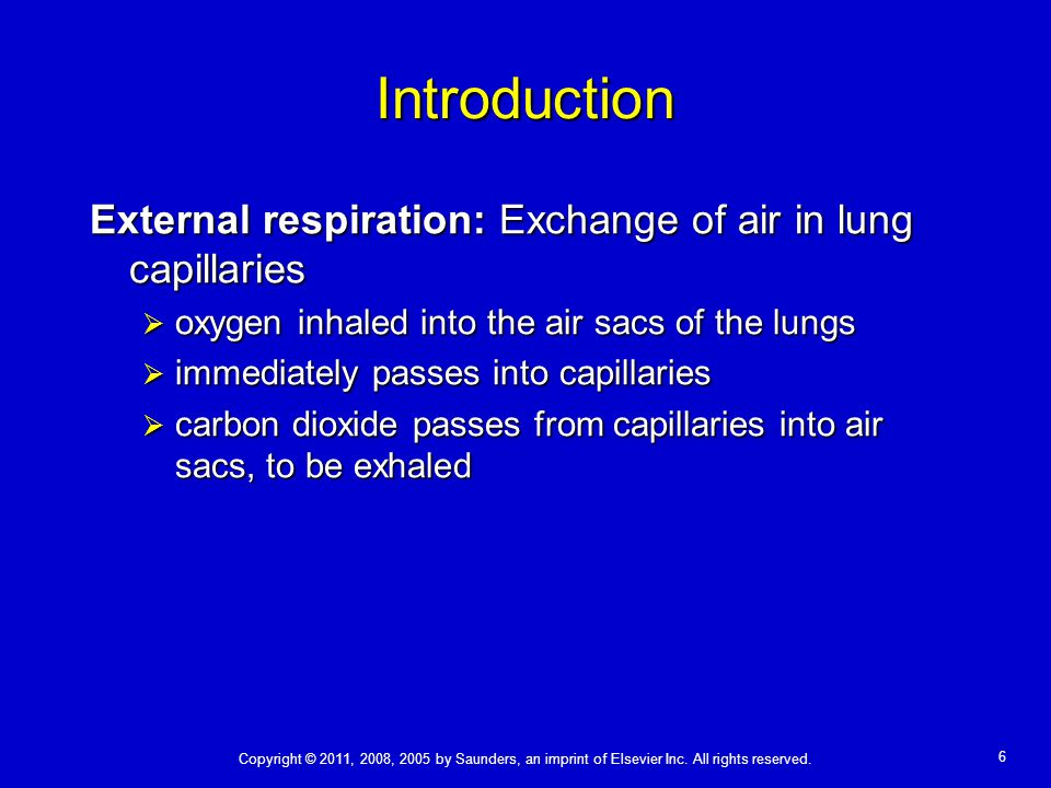Introduction External respiration: Exchange of air in lung capillaries