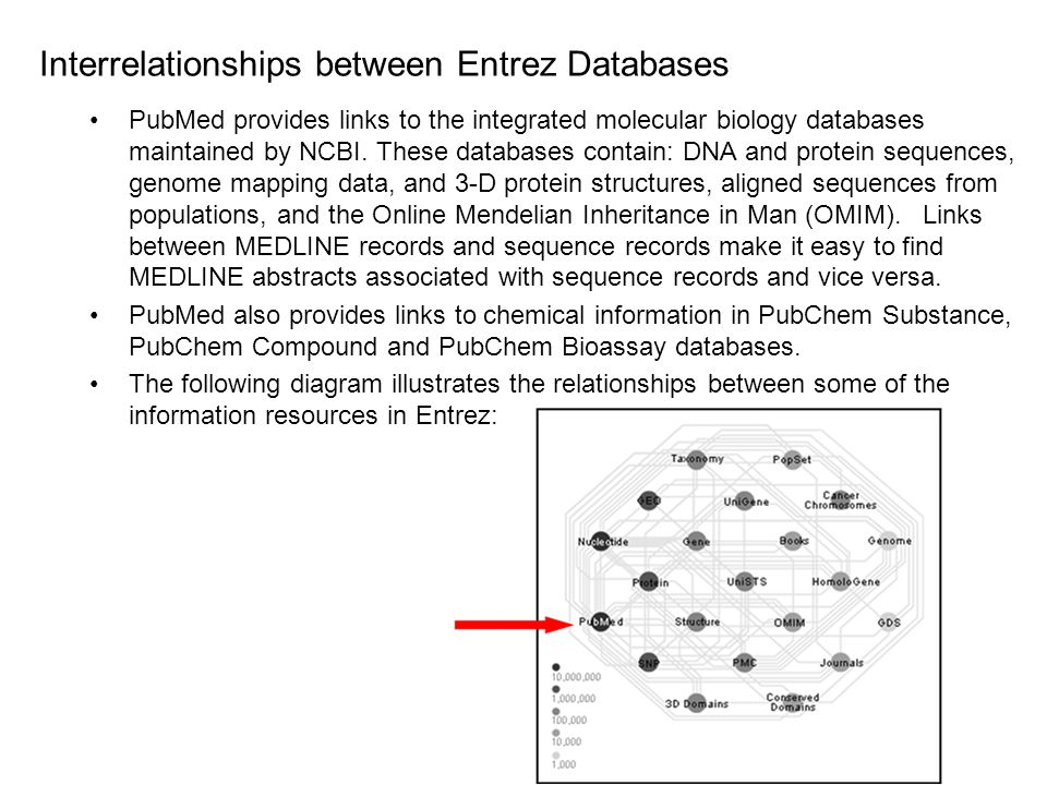 Interrelationships between Entrez Databases