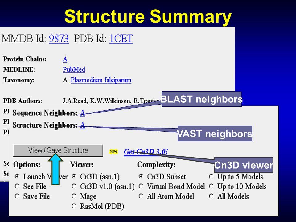 Structure Summary BLAST neighbors VAST neighbors Cn3D viewer