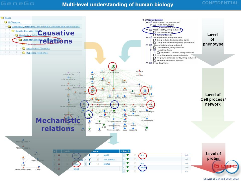 Multi-level understanding of human biology