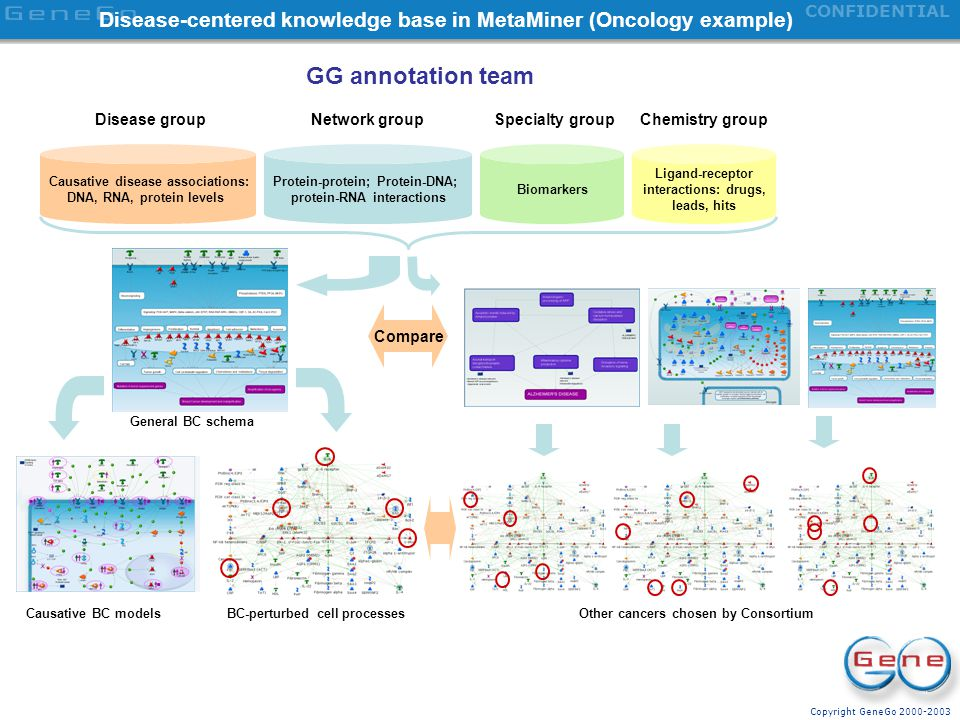 Disease-centered knowledge base in MetaMiner (Oncology example)