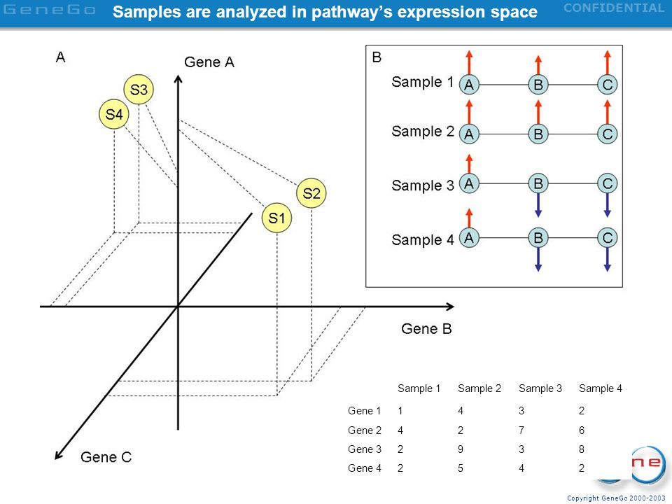 Samples are analyzed in pathway's expression space