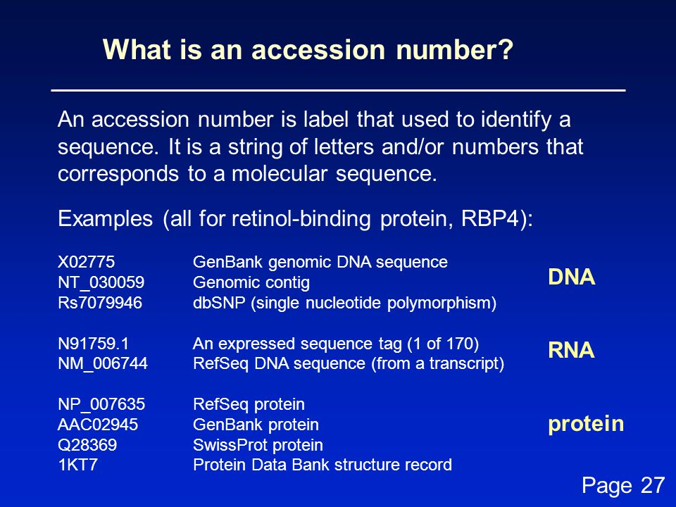 What is an accession number