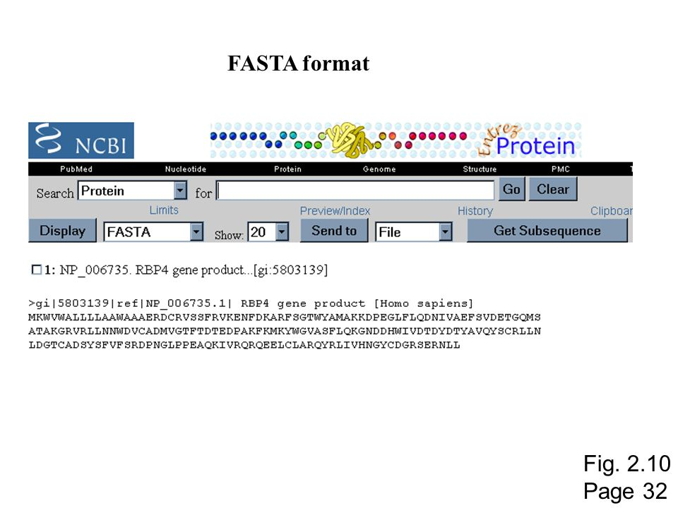 FASTA format Fig. 2.10 Page 32