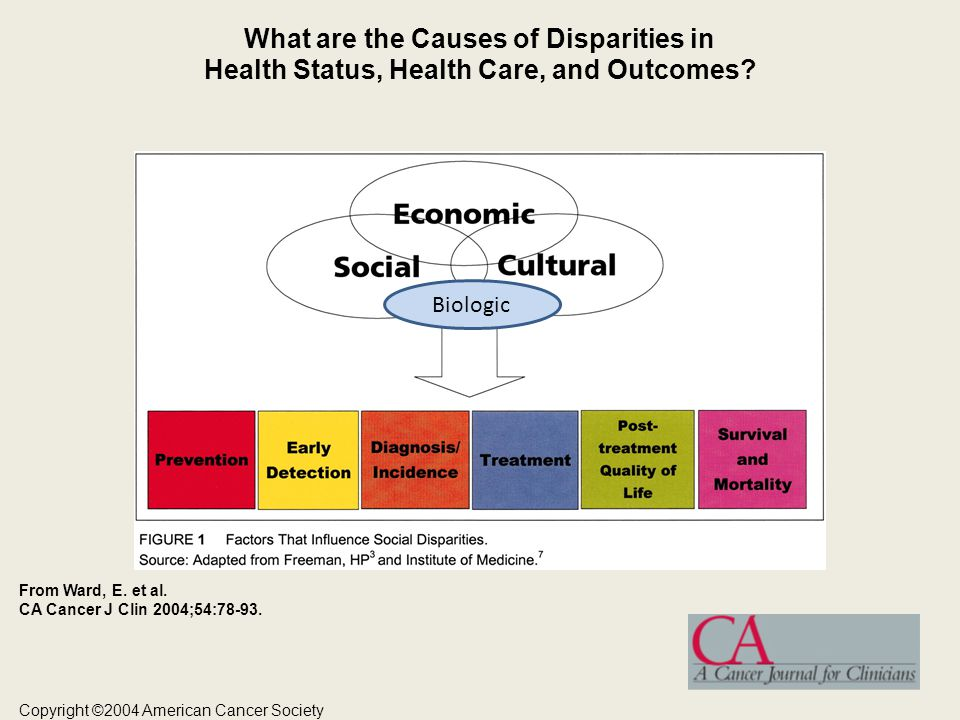 What are the Causes of Disparities in