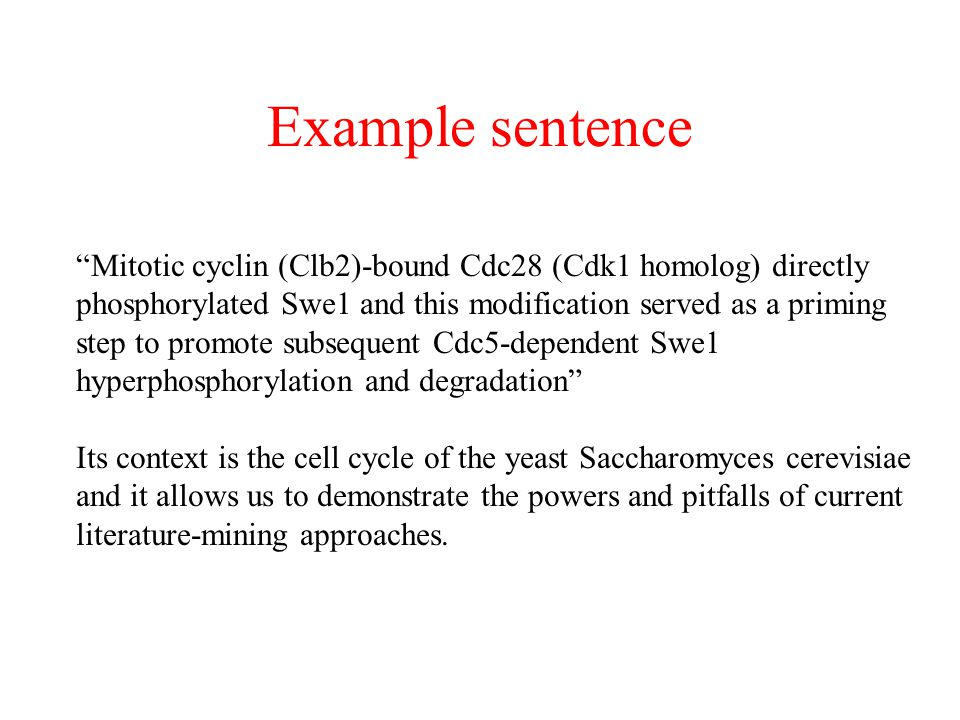 Example sentence Mitotic cyclin (Clb2)-bound Cdc28 (Cdk1 homolog) directly. phosphorylated Swe1 and this modification served as a priming.