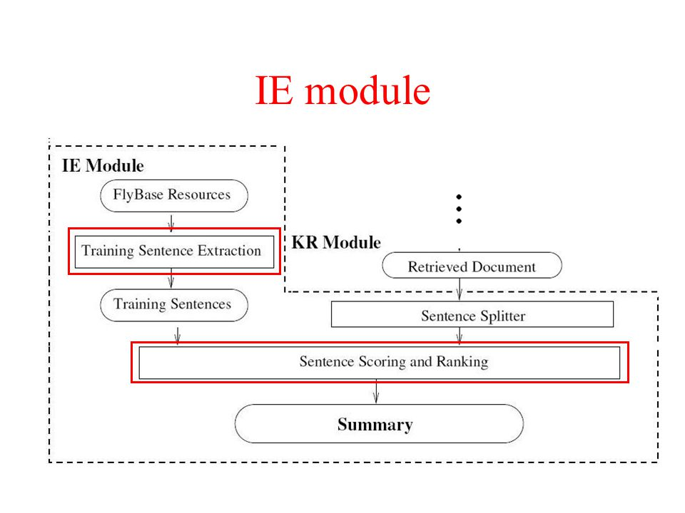 IE module