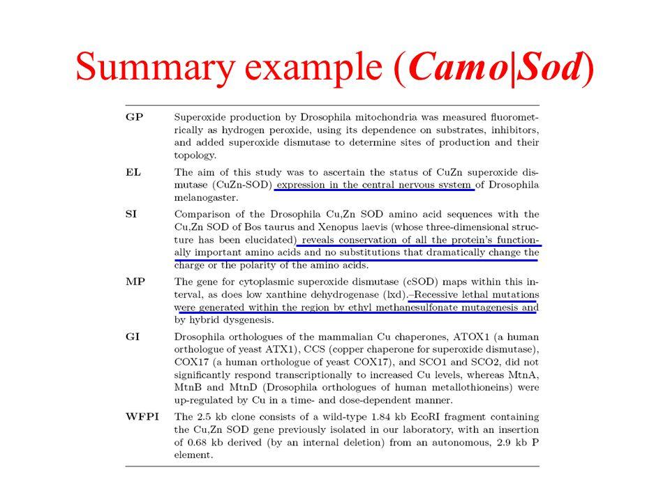 Summary example (Camo|Sod)