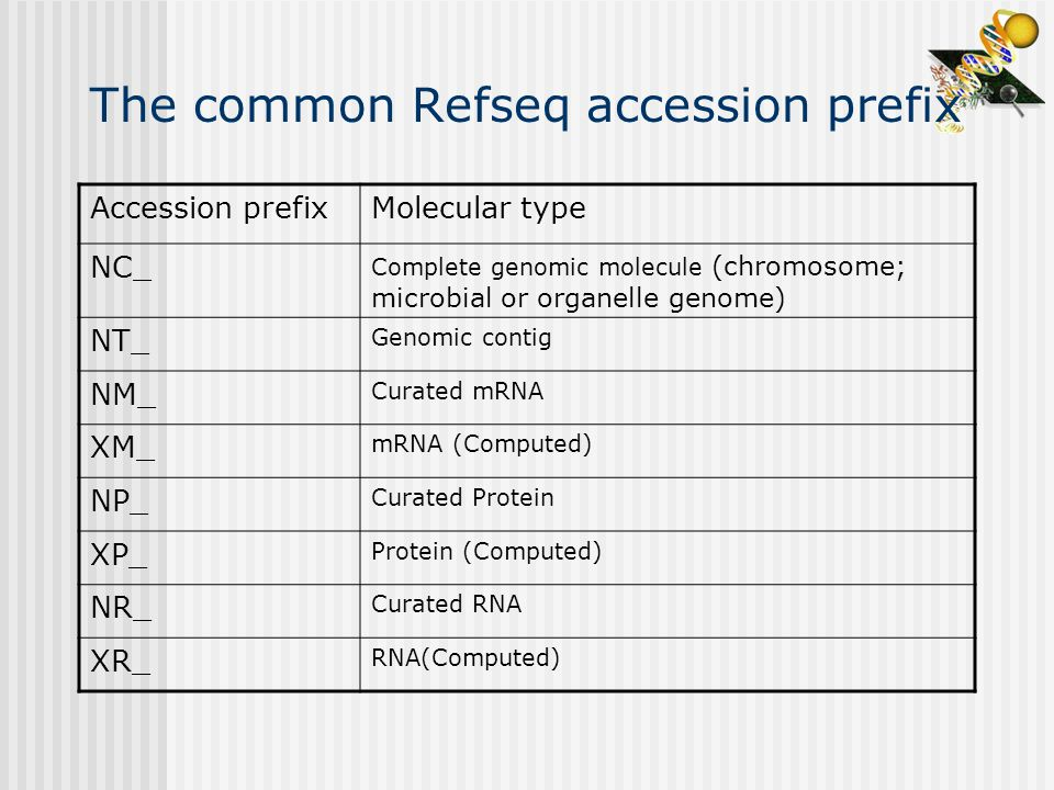 The common Refseq accession prefix