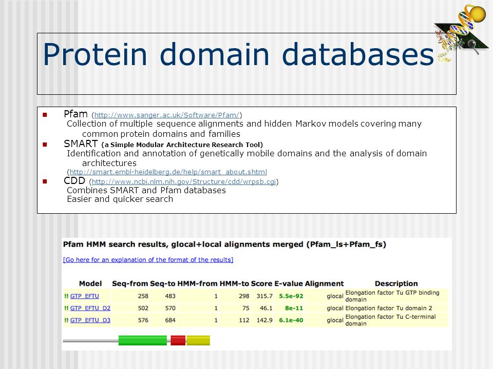 Protein domain databases