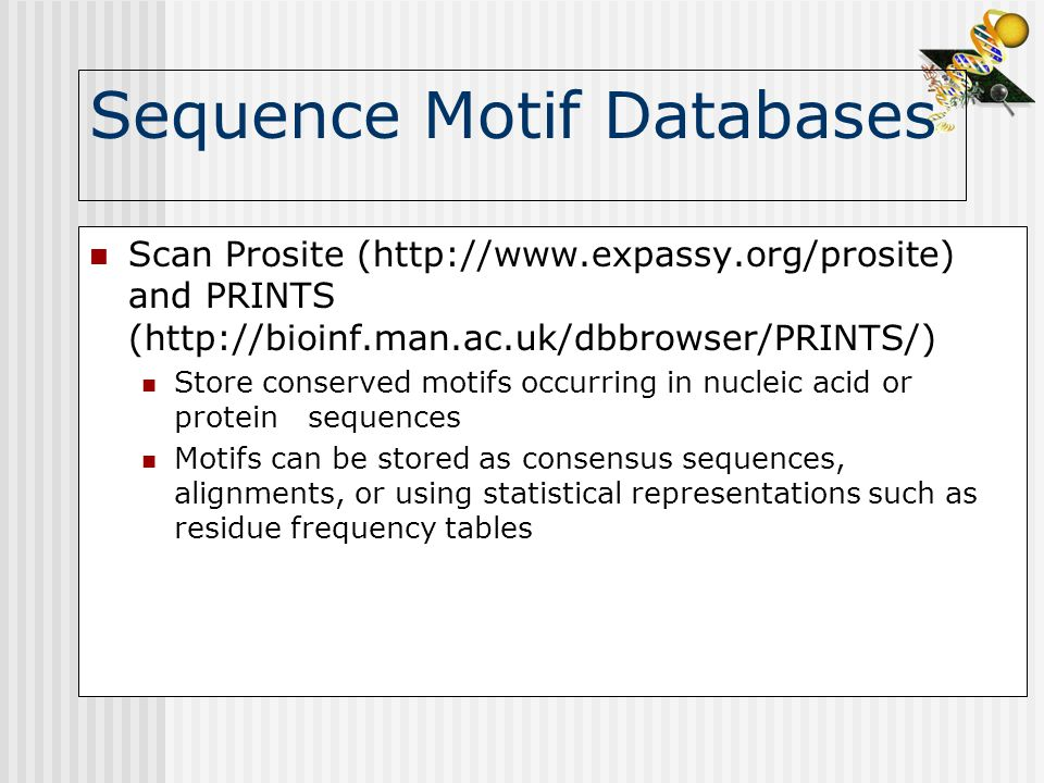 Sequence Motif Databases