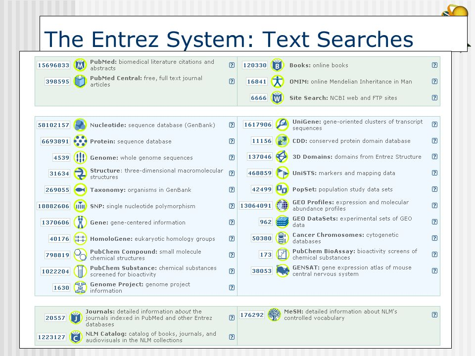 The Entrez System: Text Searches