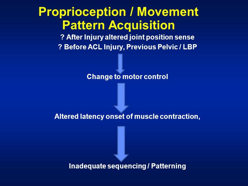 Proprioception / Movement Pattern Acquisition