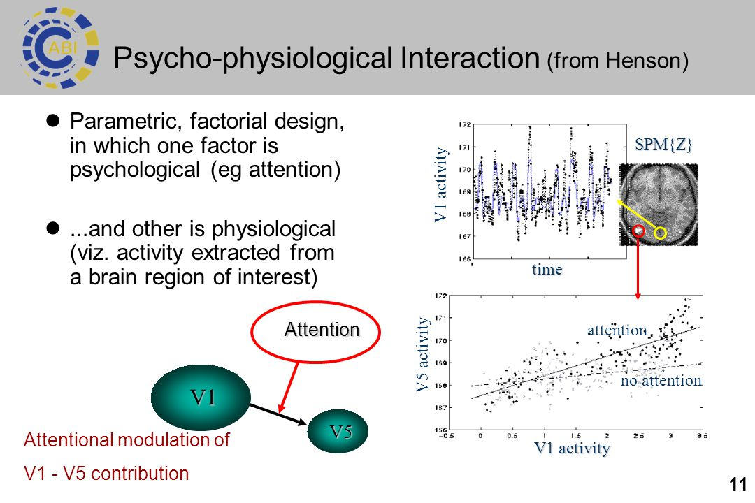 Psycho-physiological Interaction (from Henson)