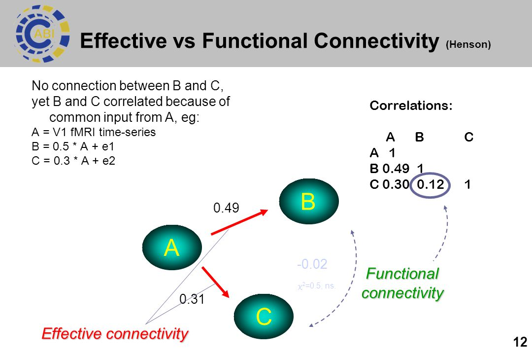 Effective vs Functional Connectivity (Henson)