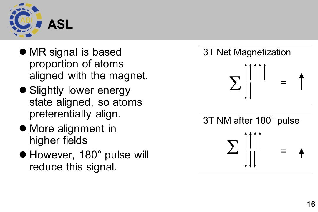 ASL MR signal is based proportion of atoms aligned with the magnet. Slightly lower energy state aligned, so atoms preferentially align.