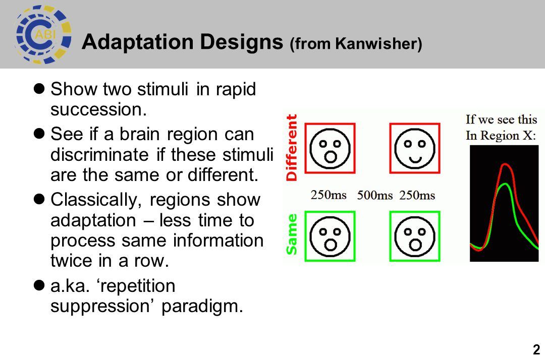 Adaptation Designs (from Kanwisher)