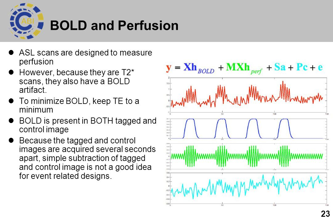 BOLD and Perfusion ASL scans are designed to measure perfusion