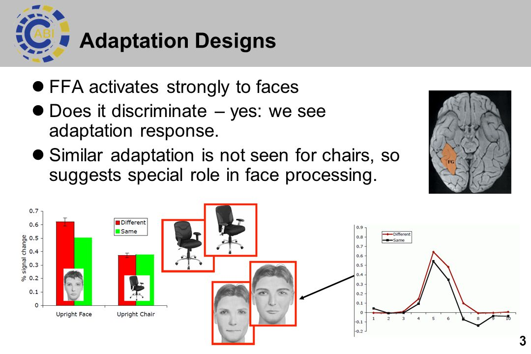 Adaptation Designs FFA activates strongly to faces