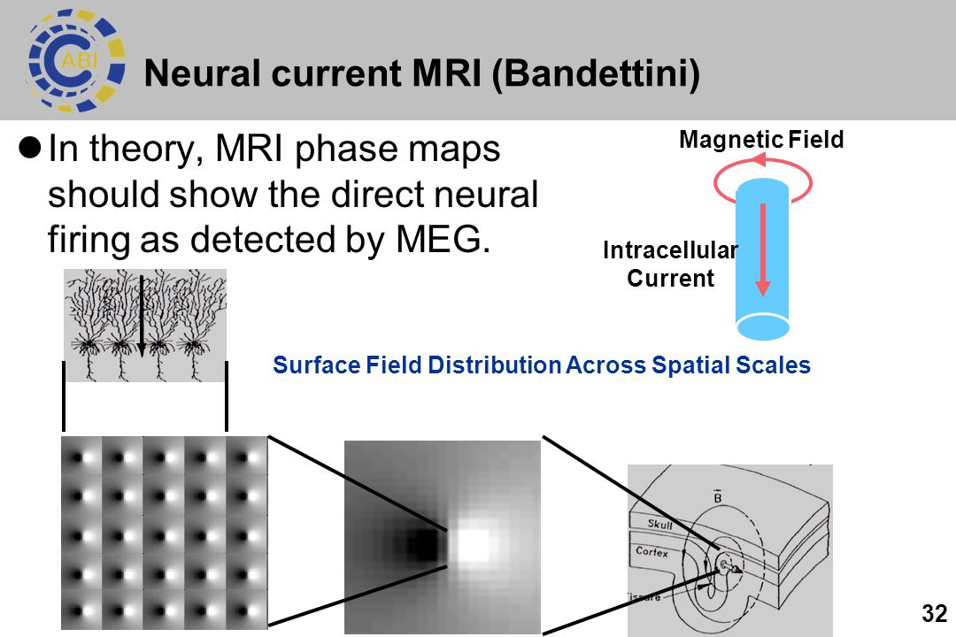 Neural current MRI (Bandettini)