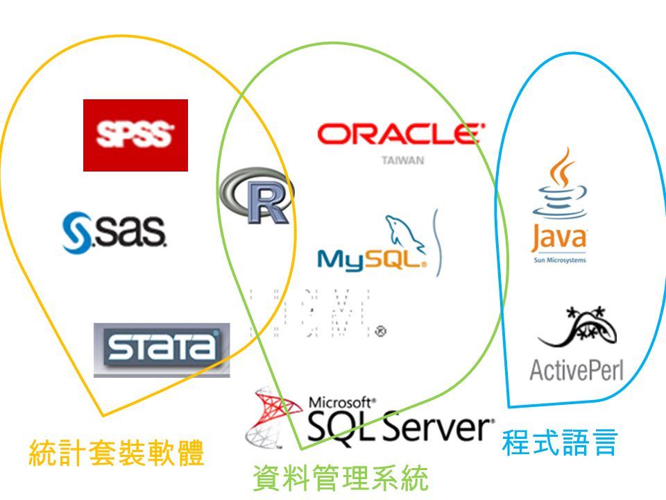 程式語言 統計套裝軟體 資料管理系統